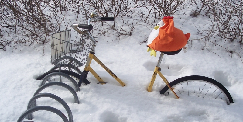 A bright orange chicken pillow sits atop a yellow bicycle buried in three feet of Canadian snow.
