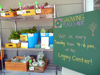A tall shelf holds several bunches of fresh vegetables at the Growing Places Indy Farm Stand at the Indianapolis Legacy Center.