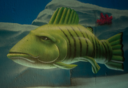 A section of Leck's mural: A fictional green fish swims lazily through the water.