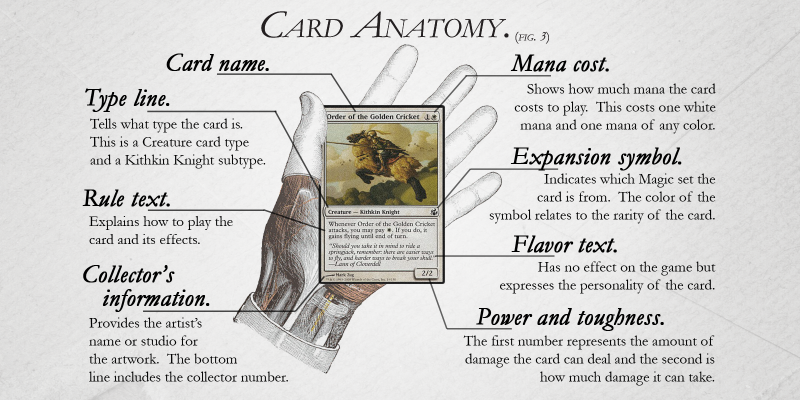 A graphic explaining the components of a Magic: The Gathering card.